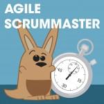 Agile Scrummaster