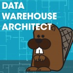 Data Warehouse Architect