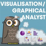 Visualisation Analyst