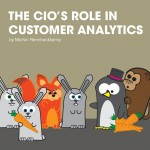The CIOs role in customer analytics