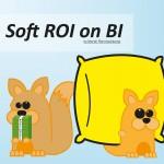 Soft ROI on BI